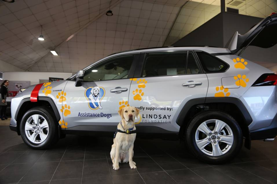 The Lindsay Foundation RAV4 receives the Woof of approval.